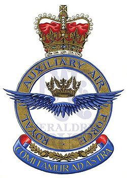 Royal Auxiliary Air Force.jpg (250×350)