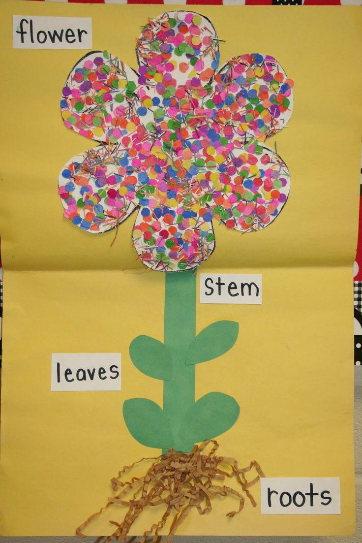 Trabajando la primavera, mural identificativo de las diferentes partes de una flor