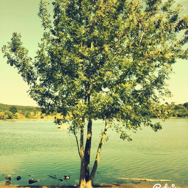 Sapanca Gölü in Sakarya, Türkiye