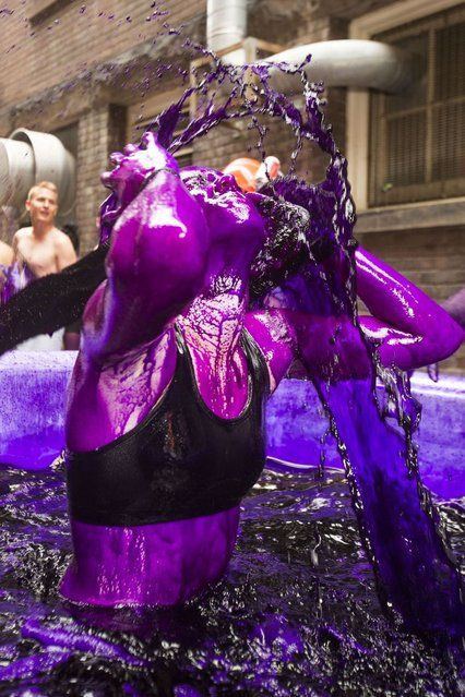 Student Tori McIntyre tosses her hair up after taken a dip in purple dyed water tub in Ontario, Canada, on September 3, 2013. First-year student engineers traditionally are dyed purple at most Canadian universities by the more senior class. This all is done for fun and the dye wears off after about a week. (Photo by Norm Betts/Barcroft Media)