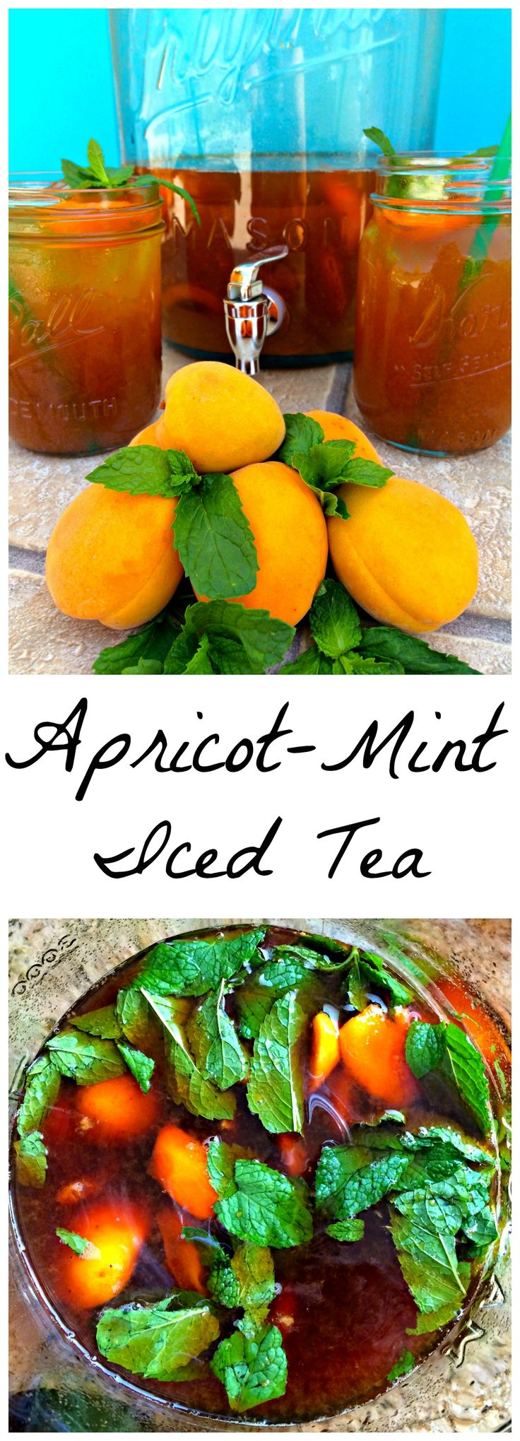Apricot-Mint Iced Tea ~ Tea stepped with fresh apricot and mint and iced to be utterly refreshing. ~ The Complete Savorist