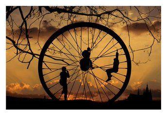 Leidenschaft verleitet dazu, im Kreis zu denken.   Oscar Wilde
