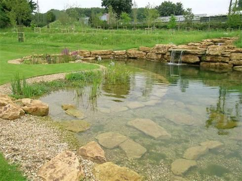 natural swimming pool, I am obsessed!