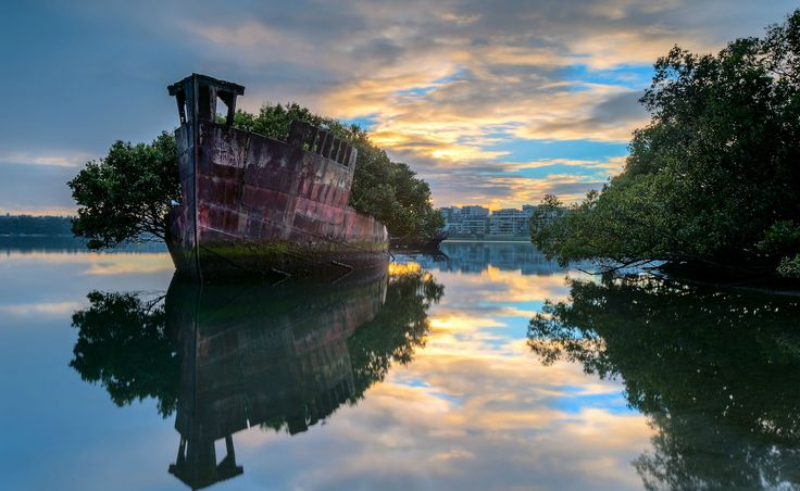 102-Year-Old Abandoned Ship is now a Floating Forest loceted in Homebush Bay, Sydney, Australia