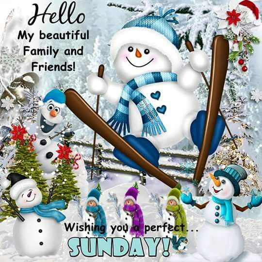 Sundays Seven (Weeks 20 + 21) - funny/beautiful