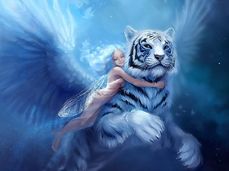 fantasy angels and fairies - Bing Images
