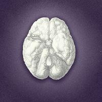 Et un peu de Neurologie: Démences, Prions et mouvements anormaux.