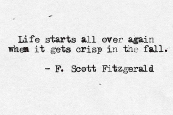 The Great Gatsby by F. Scott Fitzgerald F. Scott Fitzgerald, The Great Gatsby, quote, lit,