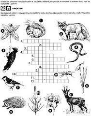 Výsledek obrázku pro křížovky pro děti k vytištění