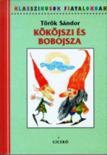Bűbájos regény egy Andris nevű kisfiúról, születéséről és barátkozásáról a két kis kedves törpével, Kököjszivel és Bobojszával. Ők, a két nevezetes világtengerész selyemvitorlás, zászlós papírhajón eljönnek esténként Andrisért, és elviszik magukkal a tündérek hazájába.