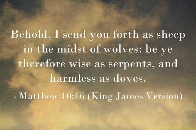 Matthew 10:16 - Wise as Serpents, Harmless as Doves