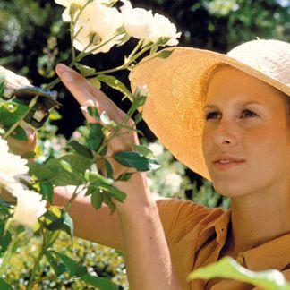 Ako zvládnuť pestovanie ruží