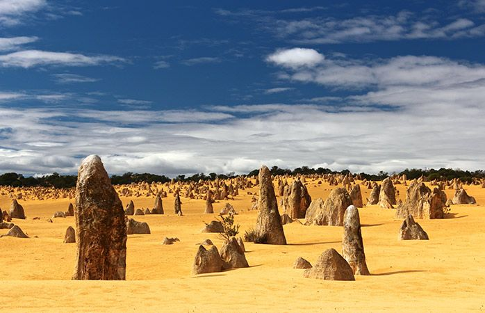 Aussie Road Trip: Swing by Nambung National Park and admire the Pinnacles formation.  Head to the coast with a trip to Cervantes, a chilled fishing town home to white sand beaches perfect for a lunch of fish and chips – grab a potato cake or two as well. Cast a line at Hangover Bay or Kangaroo Point, or crack open a lobster at the Indian Ocean Rock Lobster Factory. If you've got 4WD capability, cruise the sand dunes between Lancelin and Cervantes – if not, try your hand at sand boarding…