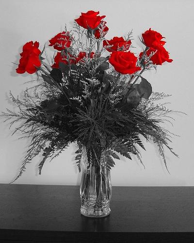 How to Arrange a Dozen Roses in a Vase in 12 Steps