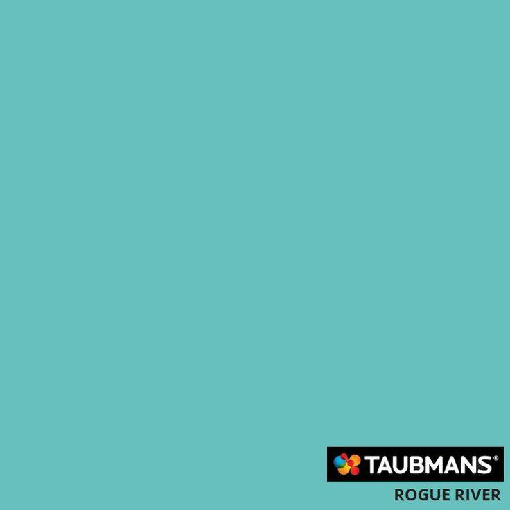 Rogue River #taubmans #mischiefmakercakes #themischiefmaker #wallpaint #paintchip