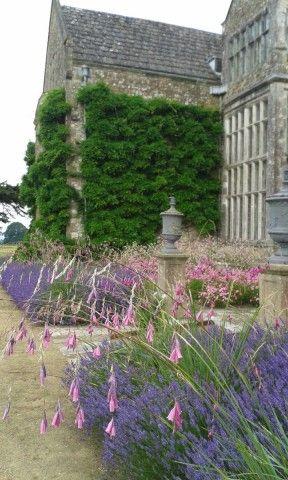 Doddington Place Gardens - » Tom Brown, Head Gardener of Parham House, West Sussex - Faversham, Sittingbourne, Kent