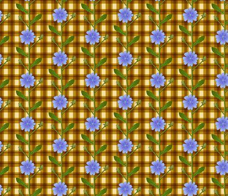 Rustic chicory flower fabric by mia_valdez on Spoonflower - custom fabric