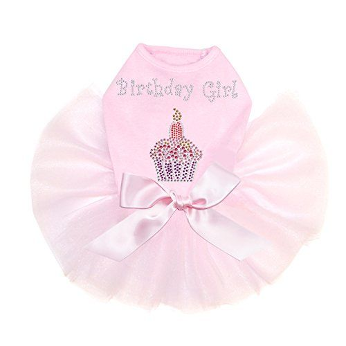 Dog in the Closet Birthday Girl  Dog Tutu >>> Click image for more details. (This is an affiliate link) #dogapparel