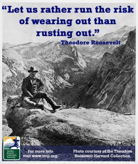 The 25+ best Teddy roosevelt quotes ideas on Pinterest ... Theodore Roosevelt Grand Canyon Quote