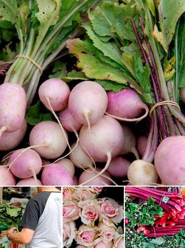 Market photos 12/12/13  https://www.facebook.com/media/set/?set=a.604251799596693.1073741825.138489412839603&type=3
