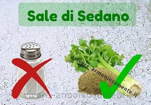 Il sale di sedano è un ottimo sostituto del sale tradizionale. Ecco la procedura per fare il sale di sedano in casa con il forno, l'essiccatore o al sole.