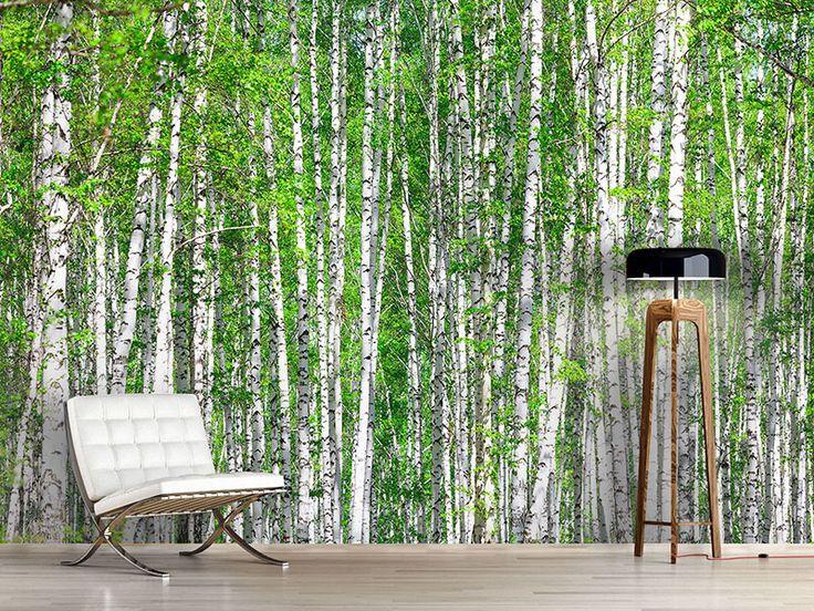 Die besten 17 ideen zu fototapete birkenwald auf pinterest for Tapete birkenwald