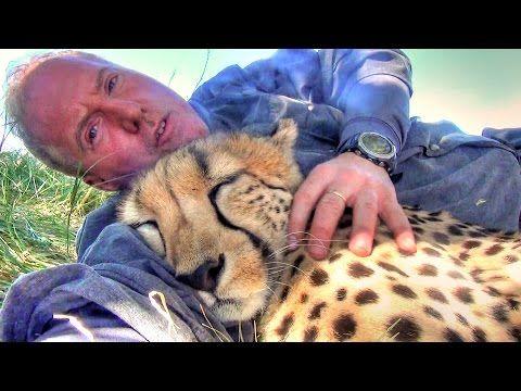 gta 5 how to take cheetah home