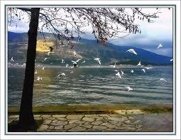 Beautiful Lake of Ioannina and the historic City of Ioannina http://www.ecoglobalsociety.com/ioannina-lake/