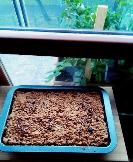 APPLE-APRICOTE CAKE