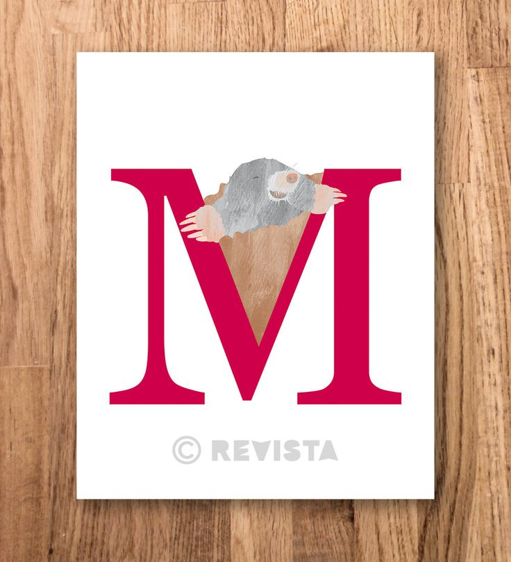 M for mole poster Instant printable Kids print by