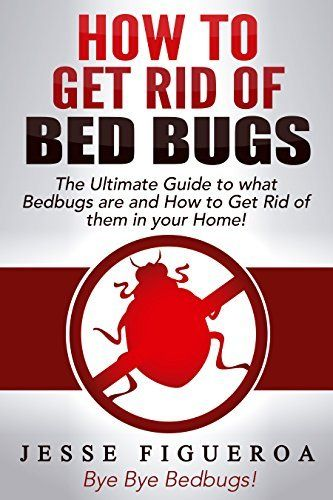 78 Best Bugs Images On Pinterest Doggies Cleaning And