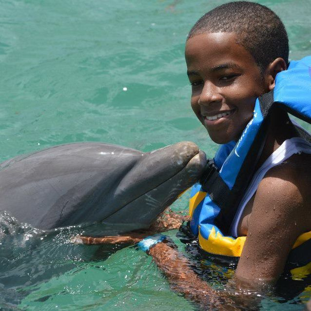 Handsome guests swims with dolphins for the first time at Dolphin Discovery Anguilla!    http://www.dolphindiscovery.com/anguilla/anguilla-location-overview.asp