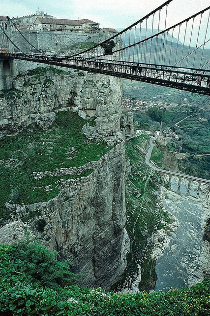 Constantine est la troisième ville la plus importante d'Algérie en termes de population.  elle porte depuis 17 siècles le nom de l'empereur Constantin Ier qui la reconstruisit en 313. Constantine est également surnommée la « ville des ponts suspendus » ou bien « ville des aigles ».: