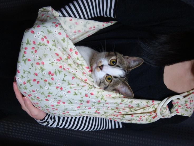 【送料無料】ペット用スリングとバンダナセット☆いちご柄♪