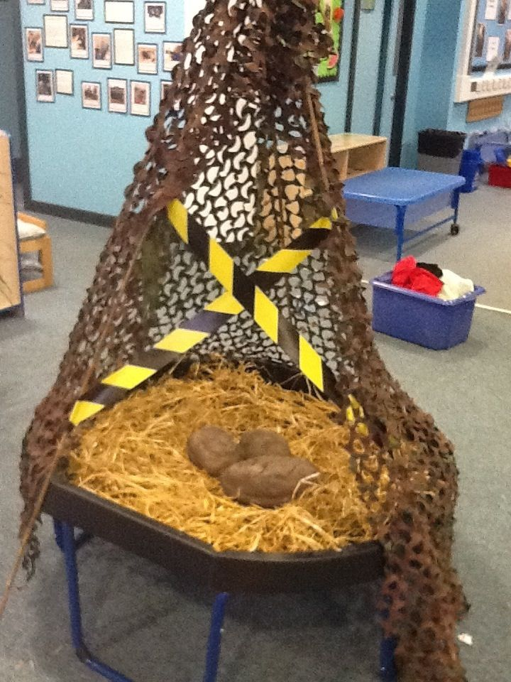 25 best ideas about dinosaur eggs on pinterest dinosaur party activities baby dinosaurs and. Black Bedroom Furniture Sets. Home Design Ideas
