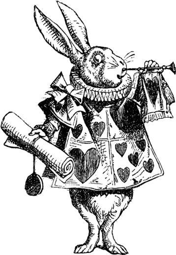 Графические ретро рисунки животных и насекомых