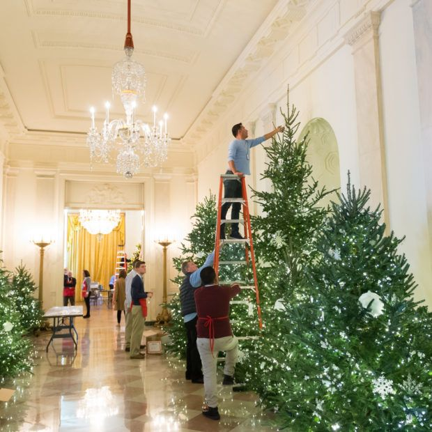 White House Christmas Decorating Volunteer 2020 Application Christmas at the White House in 2020 | Christmas house lights