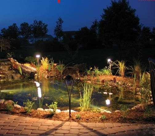 Best 25+ Contemporary Landscape Lighting Ideas On Pinterest | Garden  Design, Portfolio Landscape Lighting And Contemporary Gardens