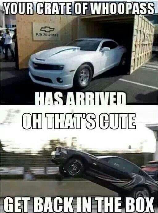 Cars Vs Trucks