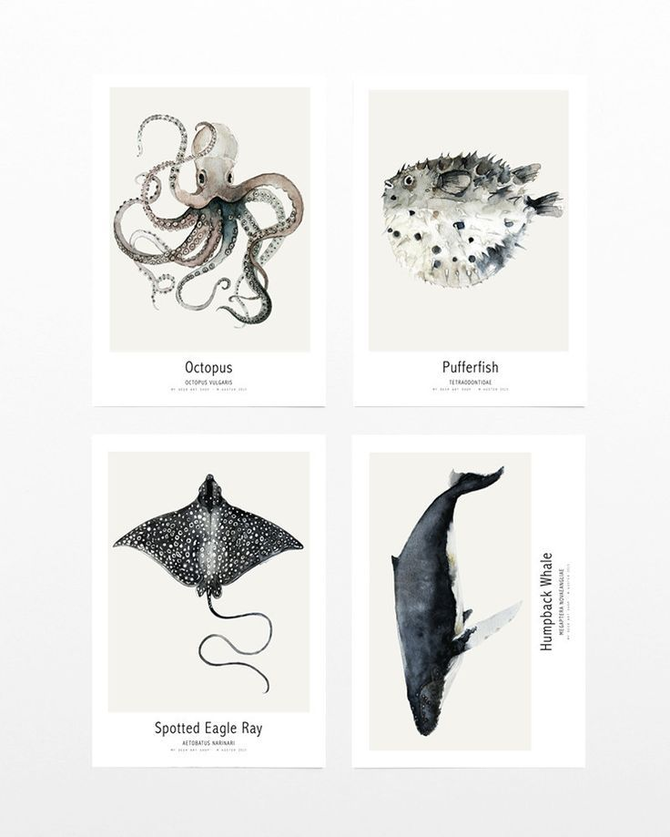 weekly wrap up, scandinavian design news, my deer art shop, ocean collection via http://www.scandinavianlovesong.com/