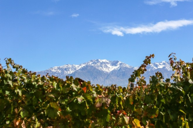 Located in the San Carlos District, O. Fournier Winery is nestled at the base of the Andes Mountains.