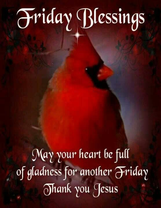 Friday Blessings | Blessed quotes, Friday morning
