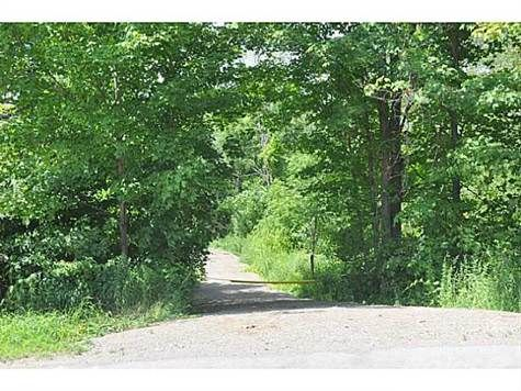 H3121556, 101 11TH CONC Road East, Flamborough, Lots and Land for sale in Freelton, ON. View this property's information, photos, map and local neighbourhood data.