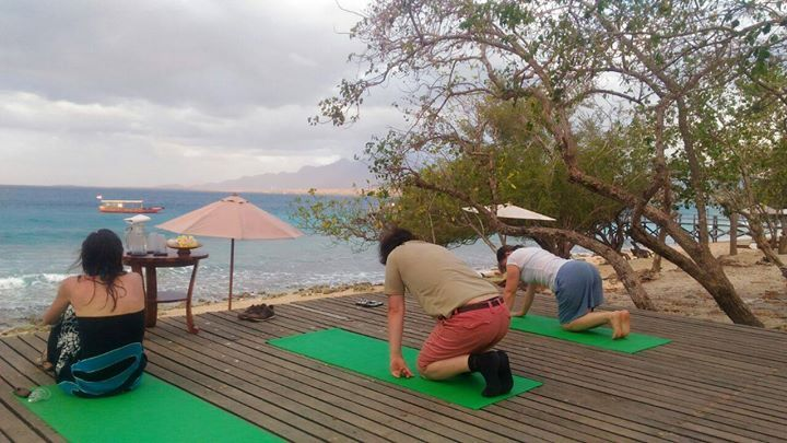 Yoga with a view!   Join our Yoga class on a wooden deck facing the white sandy private Kotal beach fronting NusaBay Menjangan by WHM.  Reserve a room at the resort and contact our Reception to join some of our activity at the resort during your stay such as: yoga jungle trekking jungle cycling snorkeling canoeing or even scuba diving.  http://ift.tt/2yD5aHS  #nusabay #nusabaymenjangan #wakahotelsandresorts #westbali #westbalinationalpark #nationalpark #yoga #trekking #cycling #jungle…