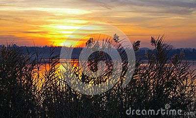 Sunset over a small lake in Lombardy hidden by a cannet