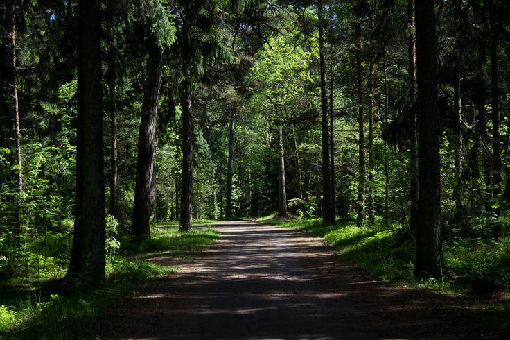 Photo: Satu Hämäläinen