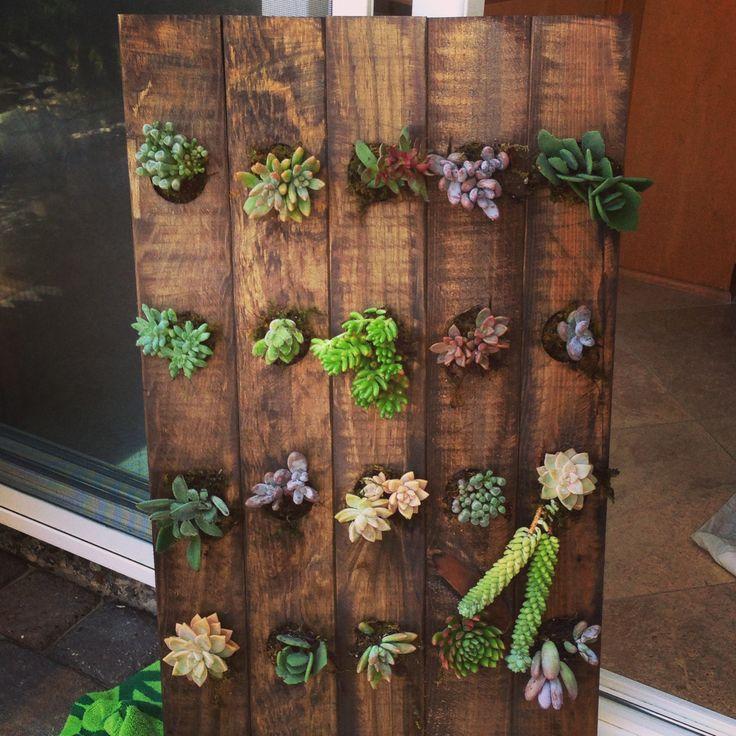 Vertical Succulent Garden Made From A Wooden Wine Rack