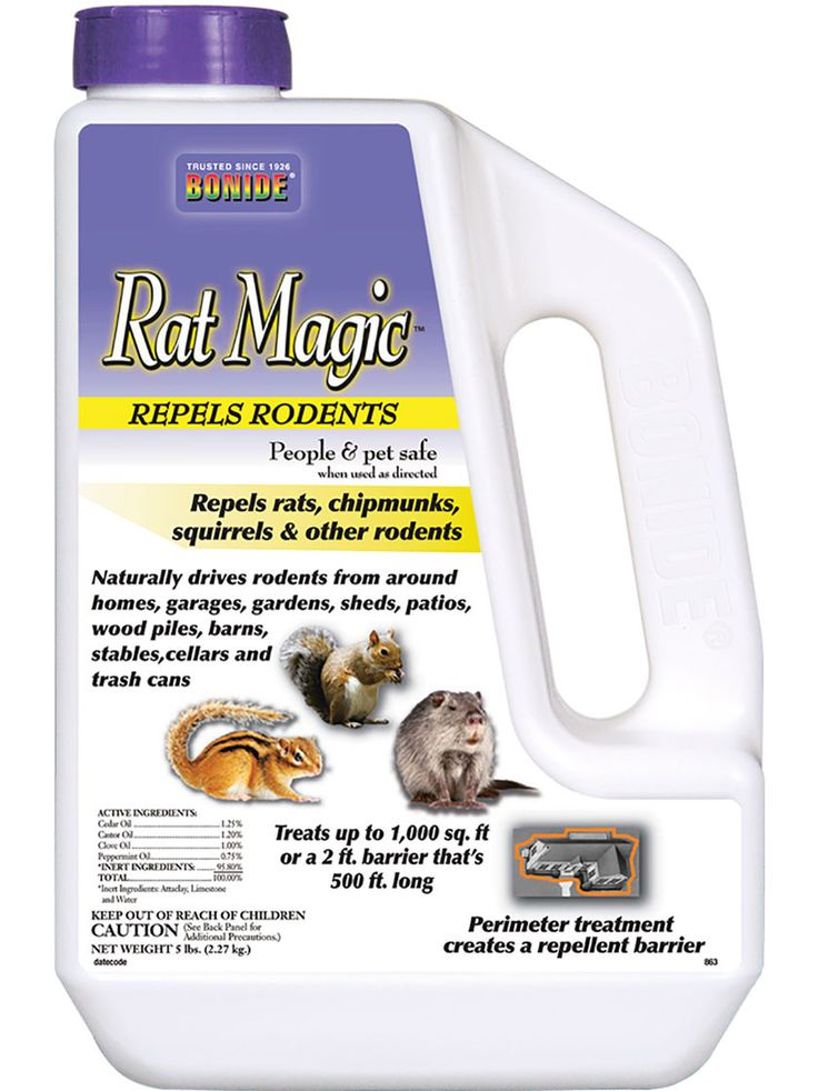 Repel Squirrels, Rats and Other Rodents without Harmful Chemicals                                                                                                                                                                                 More