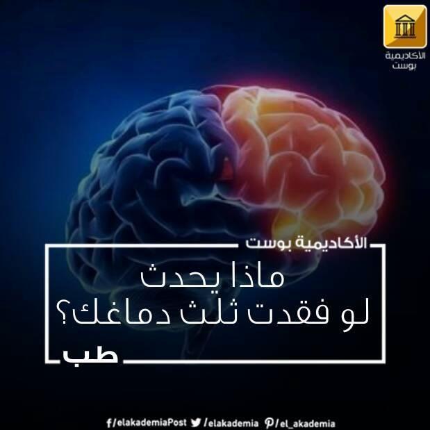 يتطور دماغ الإنسان بشكل لا يصدق وتكشف أبحاث العلماء كل يوم قدرات