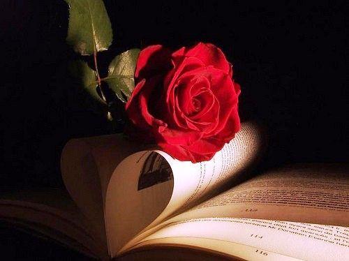 Dünya Edebiyatından Hangi Yazar Senin Ruh İkizin? test http://onedio.com/haber/dunya-edebiyatindan-hangi-yazar-senin-ruh-ikizin--311297